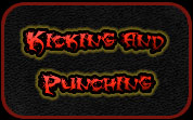 Kicking & Punching