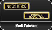 Merit Patches