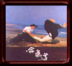 Aikido Poster 70
