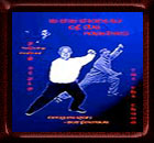 In the Shadow of the Masters: Yang Style Tai Chi Chuan Training